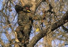 Bowhunter in Treestand Fotografie Stock