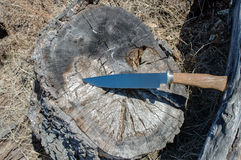 Bowie knife Royalty Free Stock Images