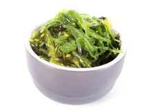 Bowl of algae Stock Images