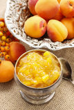 Bowl of apricot jam and ripe apricots in the background Stock Image