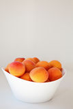 Bowl of Apricots. Fresh Apricots in white bowl Royalty Free Stock Photography