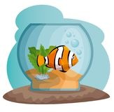 Bowl aquarium with fish. Vector illustration design Stock Photos