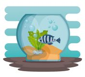 Bowl aquarium with fish. Vector illustration design Royalty Free Stock Photos