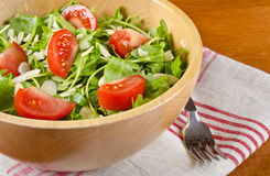 Bowl of Arugula Salad #3 Stock Images