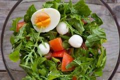Bowl of arugula salad Royalty Free Stock Images