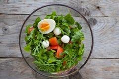 Bowl of arugula salad Stock Image