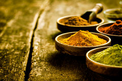 Bowl of Asian curry powder Stock Image