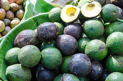 Bowl Of Avocados. Avocado in bowl lined with banana leaf Royalty Free Stock Photography