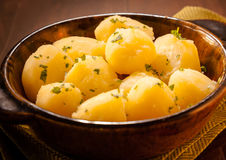 Bowl of baby boiled potatoes Royalty Free Stock Images