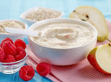 Bowl of baby food Royalty Free Stock Photo