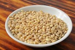 Bowl of Barley Stock Photography