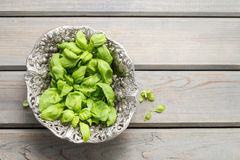 Bowl of basil leaves. On wooden table, copy space Royalty Free Stock Photos