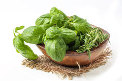 Bowl of basil and rosemary Stock Photo