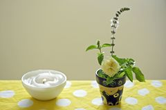 Bowl of basil and wax candle pot on table Royalty Free Stock Photos