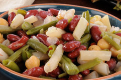 Bowl of bean salad close up Royalty Free Stock Photo