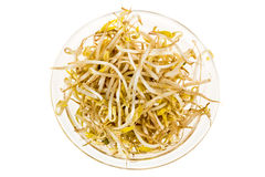 Bowl of bean sprouts isolated white background Stock Images