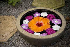 Bowl of beautiful flowers in spa area Royalty Free Stock Photo