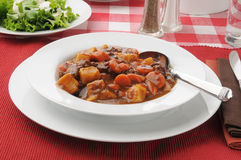 Bowl of beef stew Royalty Free Stock Image