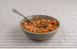 Bowl of beef stew with spoon on tablecloth Stock Image