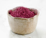 Bowl of beet root powder Stock Images