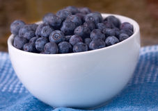 Bowl of berries Stock Image