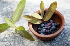 Bowl with berries Royalty Free Stock Image