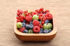 Bowl of berry fruits Stock Photos