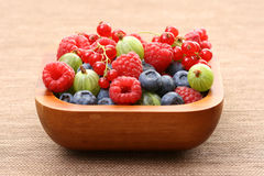 Bowl of berry fruits Stock Photography