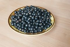 Bowl with black currant berries. Berries of black currant in a ceramic bowl on a table Royalty Free Stock Photo