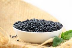 Bowl of black lentils Stock Photography