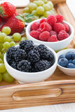 Bowl of blackberries, fresh berries and green grapes Stock Photography