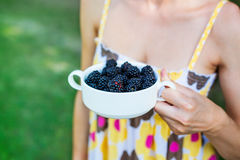 A bowl of blackberries. Stock Photography