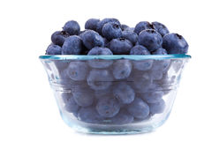 Bowl of blueberries. Glass bowl of fresh blueberries isolated on white background Royalty Free Stock Image