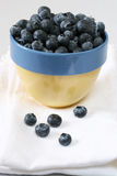 Bowl of Blueberries. Small blue and yellow bowl overflowing with blueberries Stock Photos