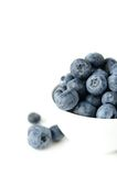 Bowl of blueberries. A still life of a bowl of blueberries royalty free stock photo
