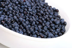 Bowl with blueberries Stock Image