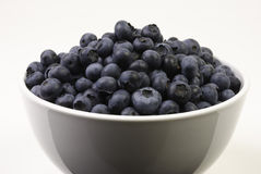 Bowl of Blueberries. Close-up of a white ceramic bowl filled with fresh blueberries Royalty Free Stock Photography