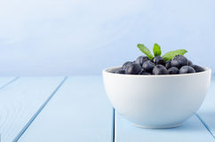 Bowl of Blueberries on Blue Royalty Free Stock Image