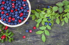 Bowl of blueberries and cranberries Stock Photos