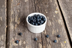 Bowl of blueberries Royalty Free Stock Image