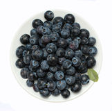 A bowl of blueberries. A large plate of ripe forest blueberries Royalty Free Stock Photo