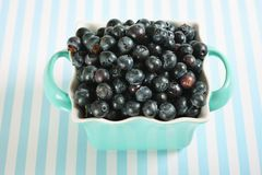 Bowl of blueberries on lines Stock Photography