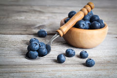 Bowl of blueberries Stock Images