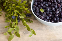 Bowl of blueberry Stock Photo