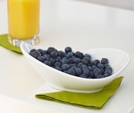 Bowl of blueberry Royalty Free Stock Image