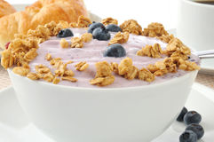 Bowl of blueberry yogurt Royalty Free Stock Image