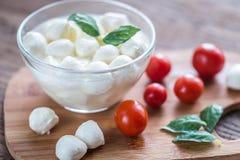 Bowl of Bocconcini mozzarella with fresh cherry tomatoes Stock Photos
