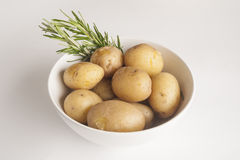 Bowl of boiled potatoes with rosemary. In white bowl Royalty Free Stock Images