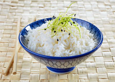Bowl of boiled rice Royalty Free Stock Photos