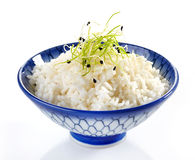 Bowl of boiled rice. On a white background Royalty Free Stock Photography
